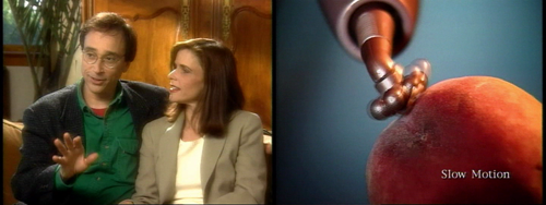 Screenshots from the Eroscillator DVD. On the left, a charming hetero couple talking about their experience. On the right, the Eroscillator being used on a peach.