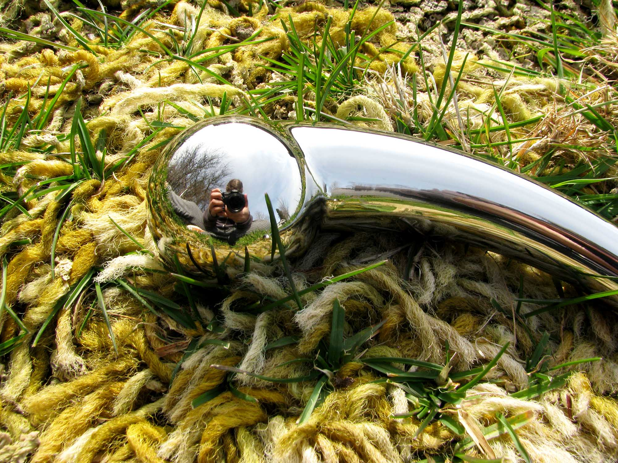 njoy Pure Wand stainless steel G-spot dildo on the ground, with golden shag carpet growing through the grass.