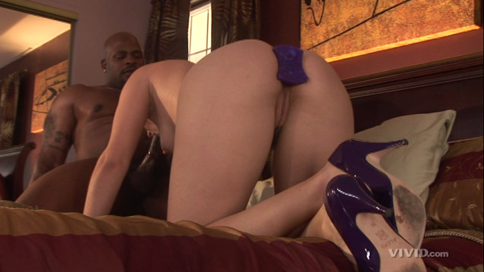 Mr Marcus Anal 16