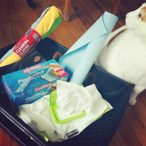 Cleaning products and the reason I have to have them