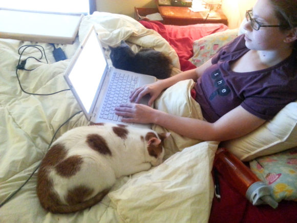 Working in bed, surrounded by cats.