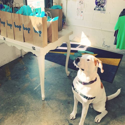 A dog stands watch at She Bop next to a table lined with gift bags for curbside pick-up.